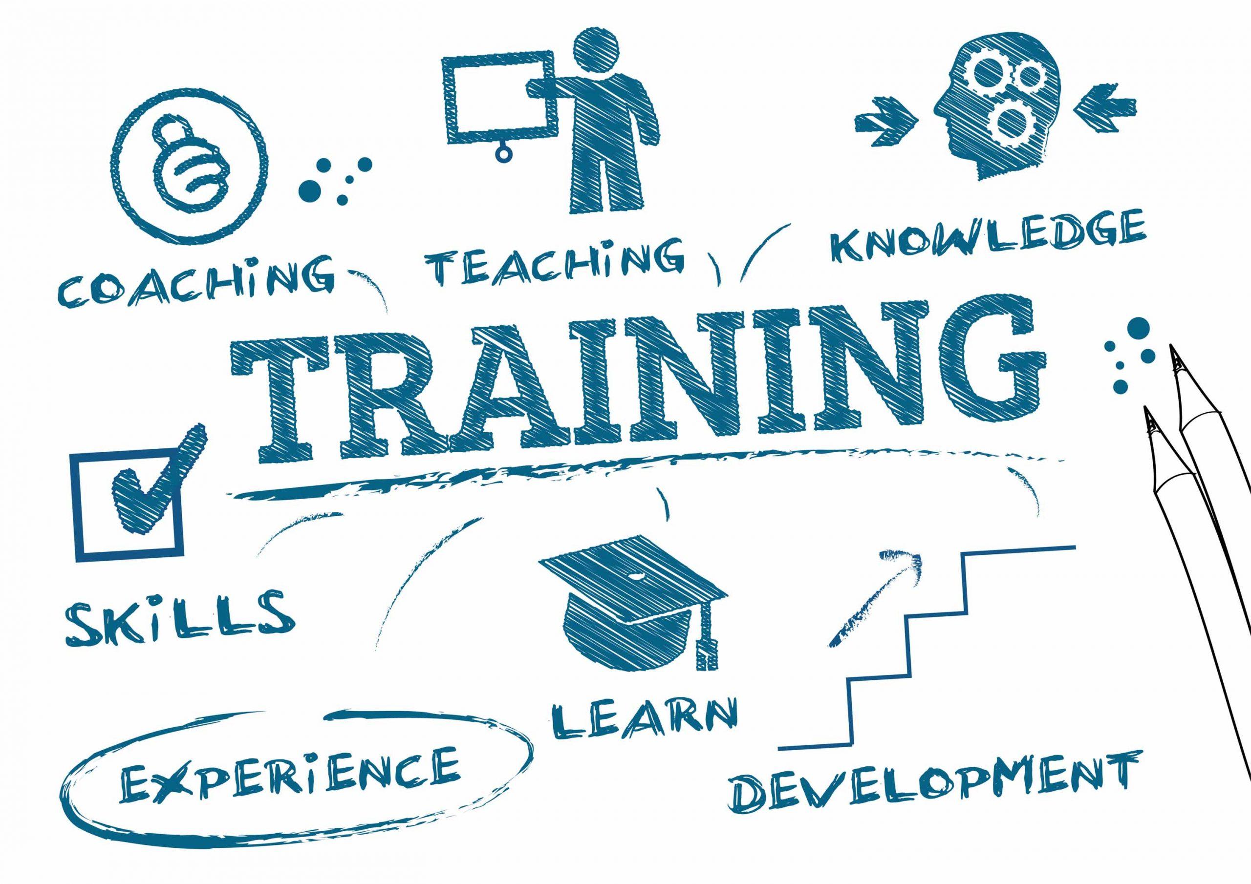 Mẫu chính sách đào tạo nhân sự gồm nội dung gì?